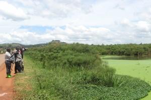 Lubigi Wetland, Uganda